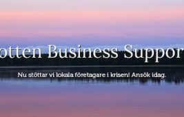 Support-Norrbotten-apsis